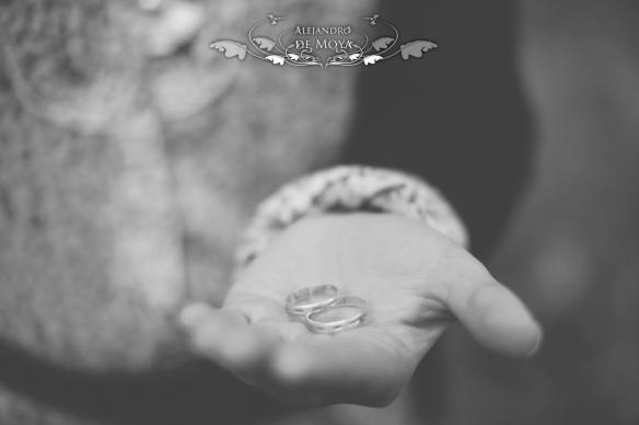 engagement javier y sonia_0455