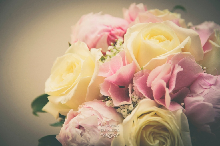 boda david y cristina_0066