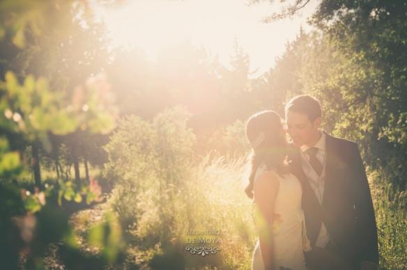 boda david y cristina_0320