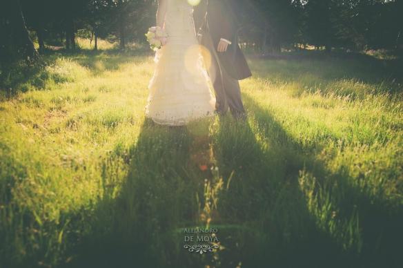 boda david y cristina_0348