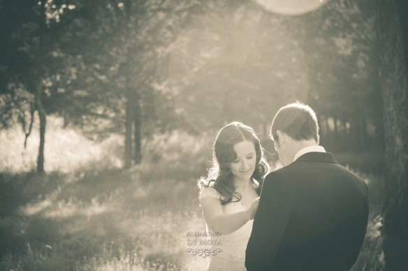 boda david y cristina_0356