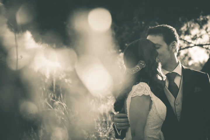 boda david y cristina_0439