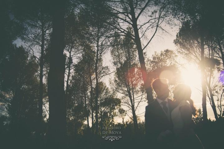 boda david y cristina_0460