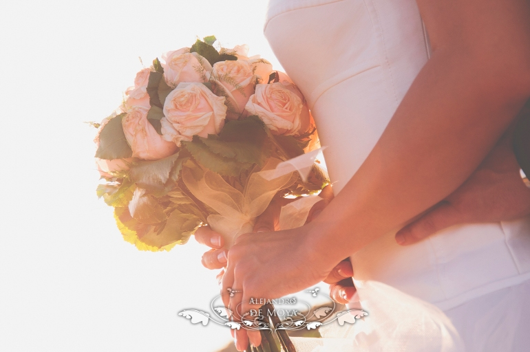boda luis y encarni_0059