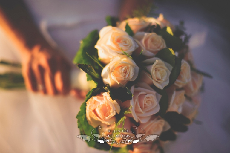 boda luis y encarni_0061