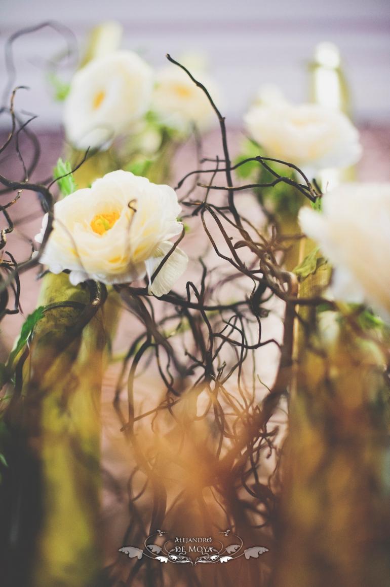 boda luis y encarni_0089