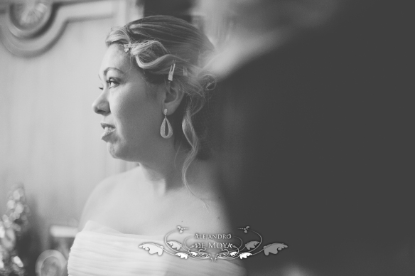 boda alvaro y almudena_0033