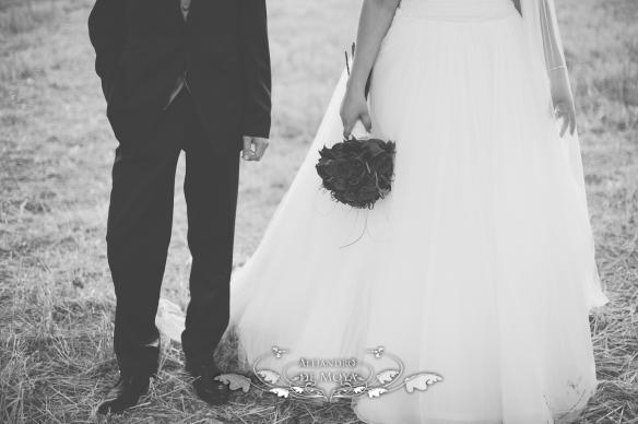 boda alvaro y almudena_0077
