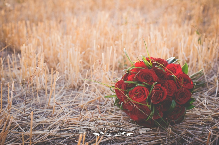 boda alvaro y almudena_0086