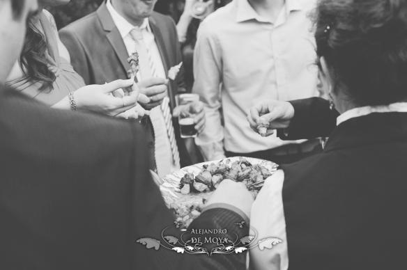 boda alvaro y almudena_0099