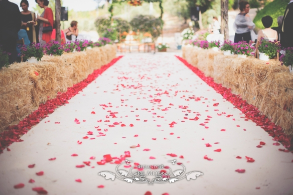 reportaje de boda jc y l_0063