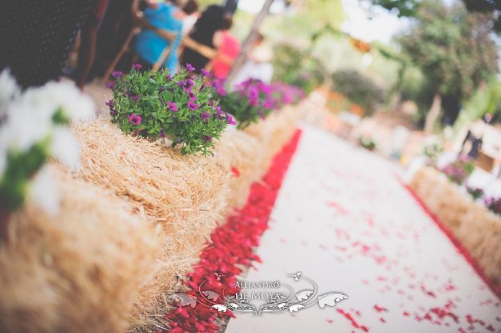 reportaje de boda jc y l_0069