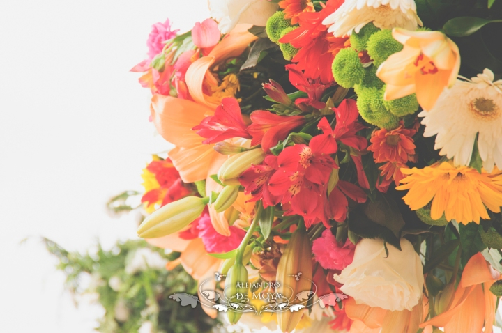 reportaje de boda jc y l_0075