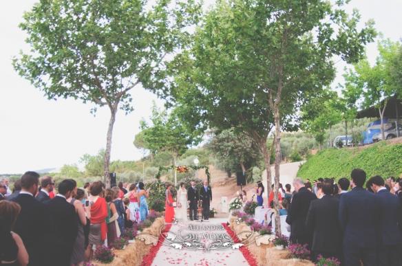 reportaje de boda jc y l_0114