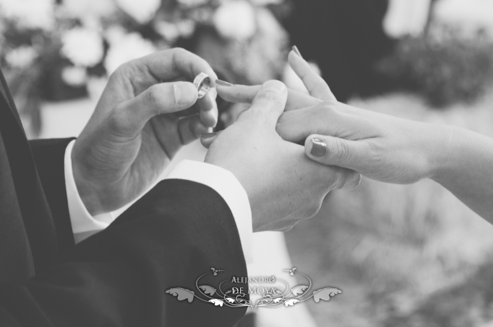 reportaje de boda jc y l_0151