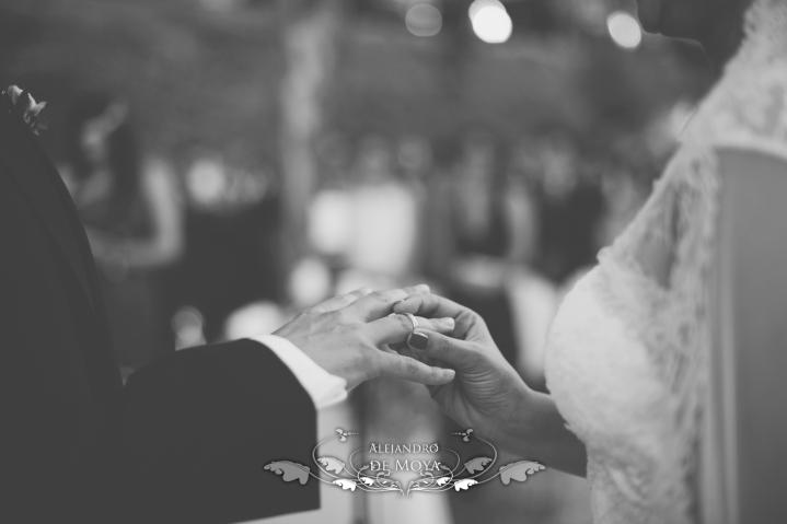 reportaje de boda jc y l_0156