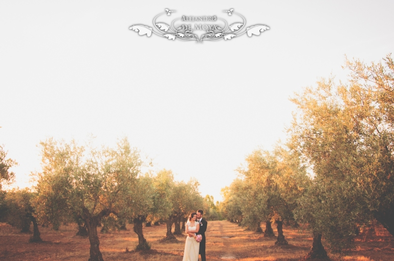 reportaje de boda jc y l_0200