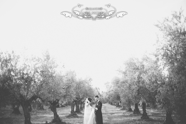 reportaje de boda jc y l_0207