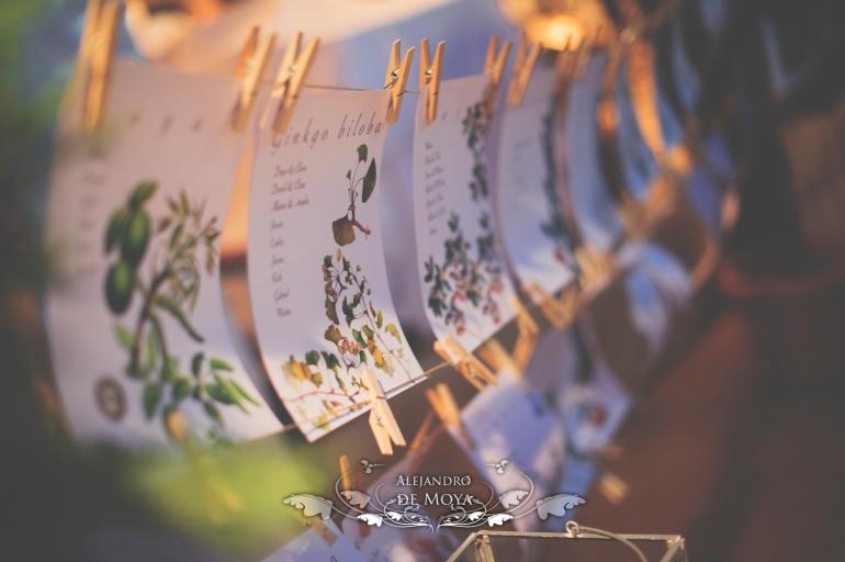 reportaje de boda jc y l_0237