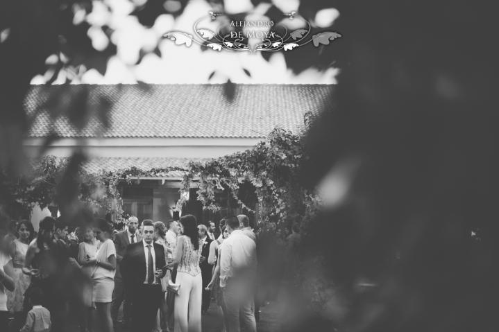 reportaje de boda ramon y estrella 0171