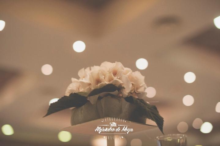 boda rufo y maricarmen _0108