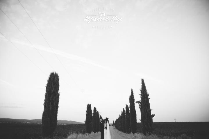 boda-alvaro-y-leticia-_124