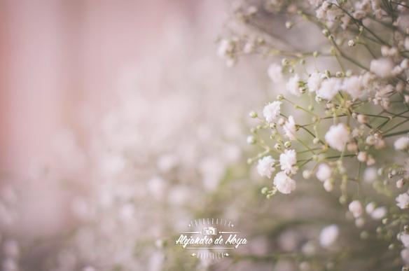boda-eduardo-y-miriam-_072