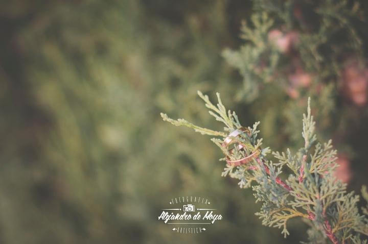 boda-eduardo-y-miriam-_097