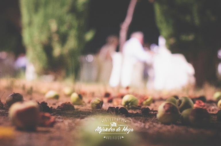 boda-eduardo-y-miriam-_162