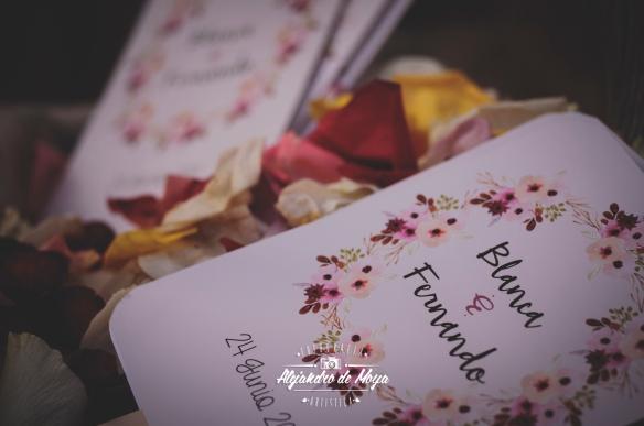 boda fernando y blanca_0082