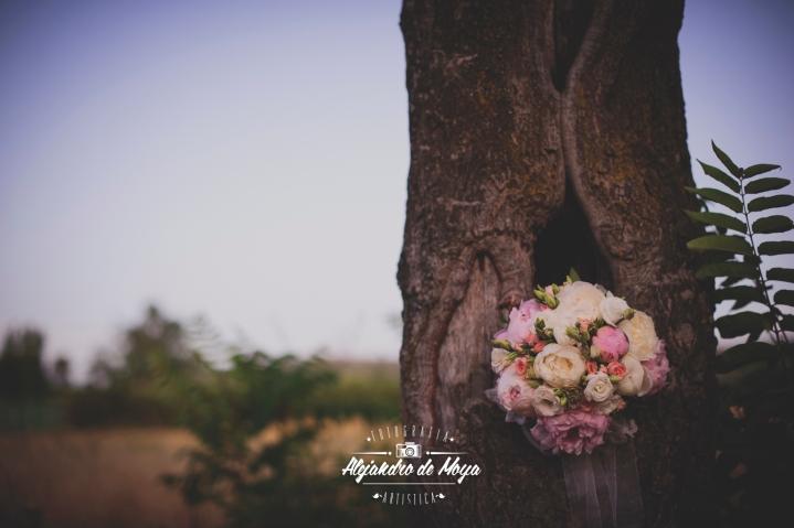boda fernando y blanca_0117