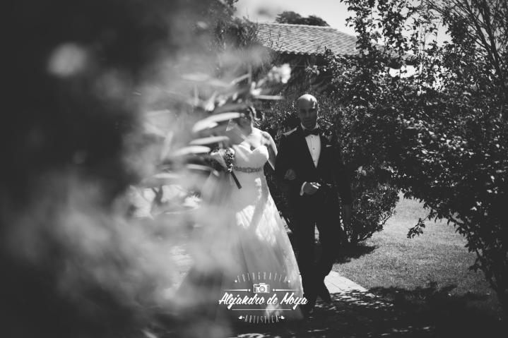 boda luis y cintia_0108