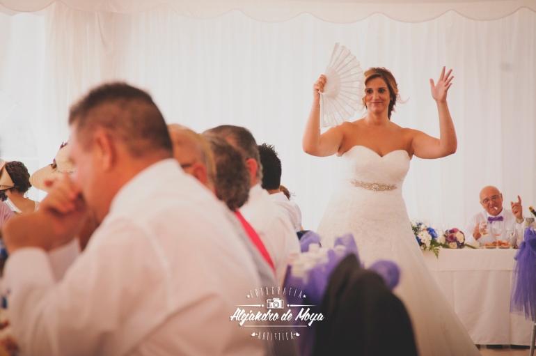 boda luis y cintia_0145