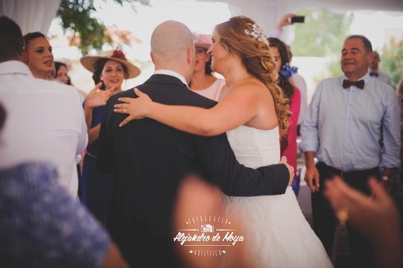 boda luis y cintia_0151