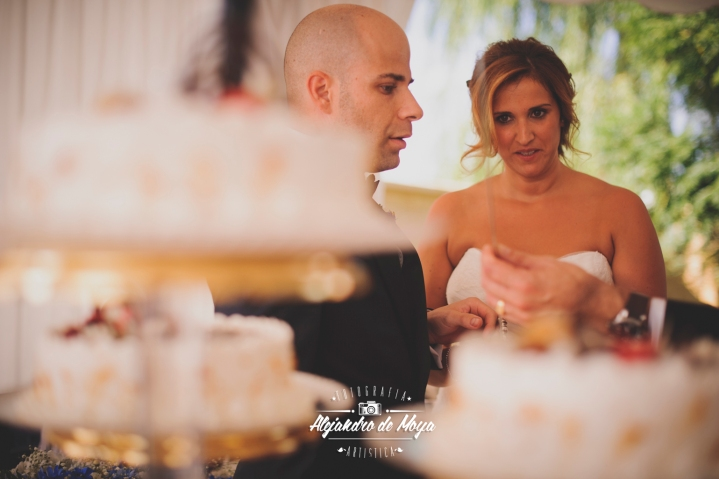 boda luis y cintia_0157