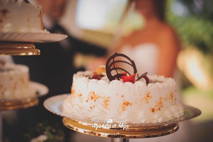 boda luis y cintia_0159