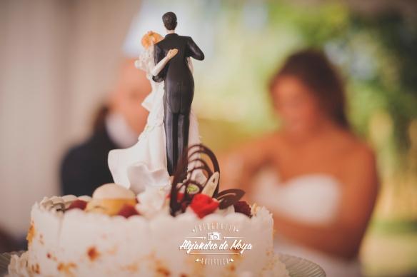 boda luis y cintia_0164